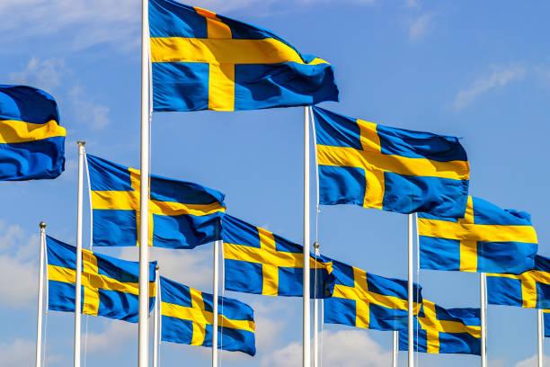 Sinalizadores de suecos no dia nacional - foto de acervo