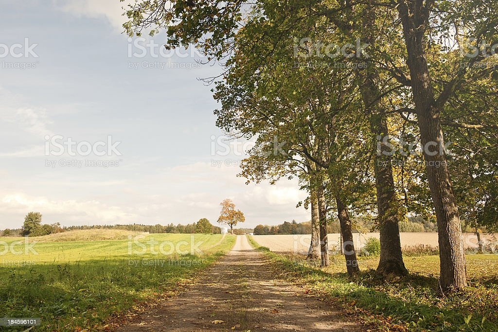 Swedish landscape in autumn stock photo