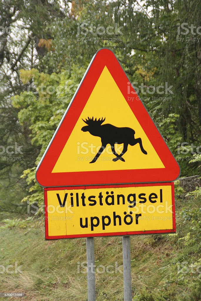 Swedish road sign with a moose. stock photo