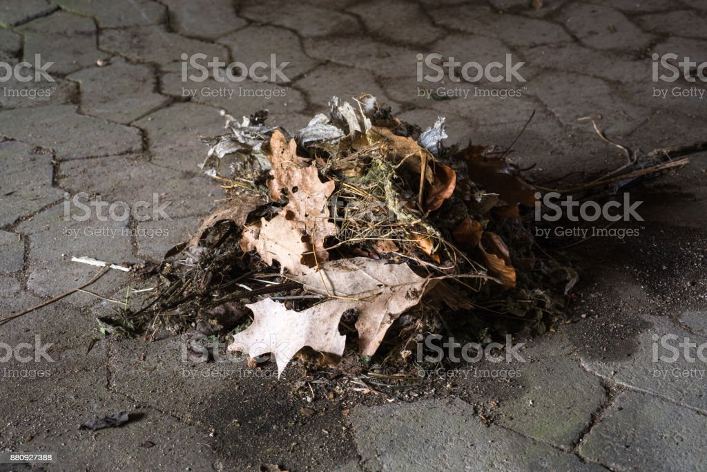 sweepings waiting to get picked up stock photo