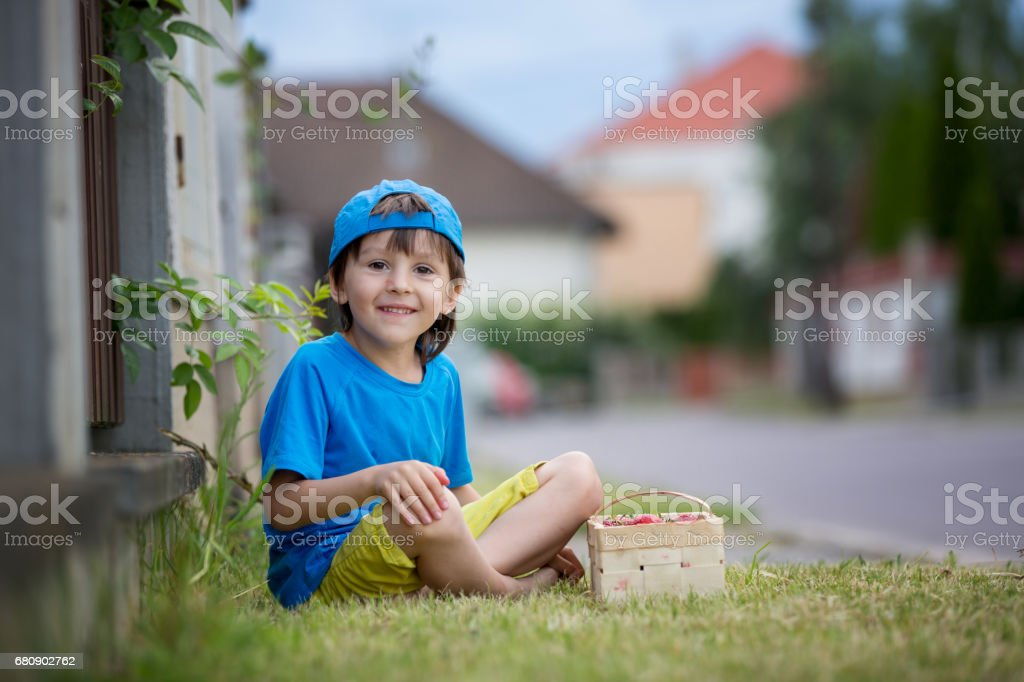 Sweet adorable little child, boy eating strawberries, summertime. Kid eating healthy organic homemade fresh strawberries royalty-free stock photo