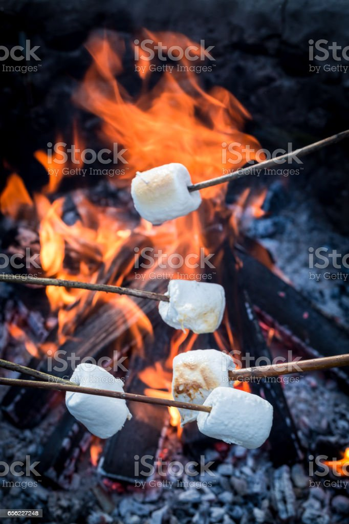 Sweet and delicious marshmallows on stick over the bonfire – Foto