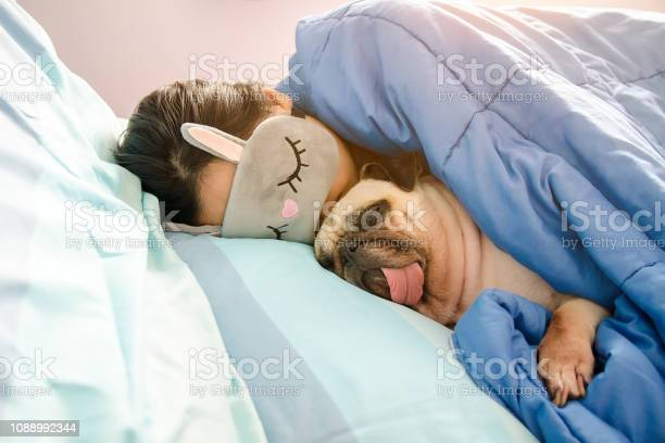 Sweet asian woman with mask and cute puppy pug dog is sleeping rest picture id1088992344?b=1&k=6&m=1088992344&s=612x612&h=0k5phrzagnkh qwt zhrgxarx6nsp6hp3famwxcu 2i=