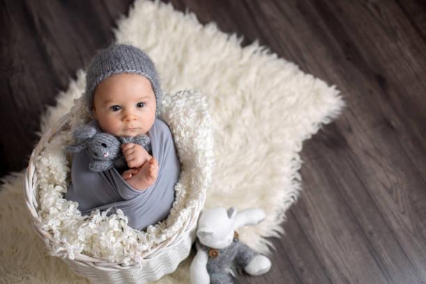 Sweet baby boy in basket holding and hugging teddy bear looking at picture id906752496?b=1&k=6&m=906752496&s=612x612&w=0&h=am fnqe1eekz1ym gq7bicxe3p8xetybbf x3ee9t68=
