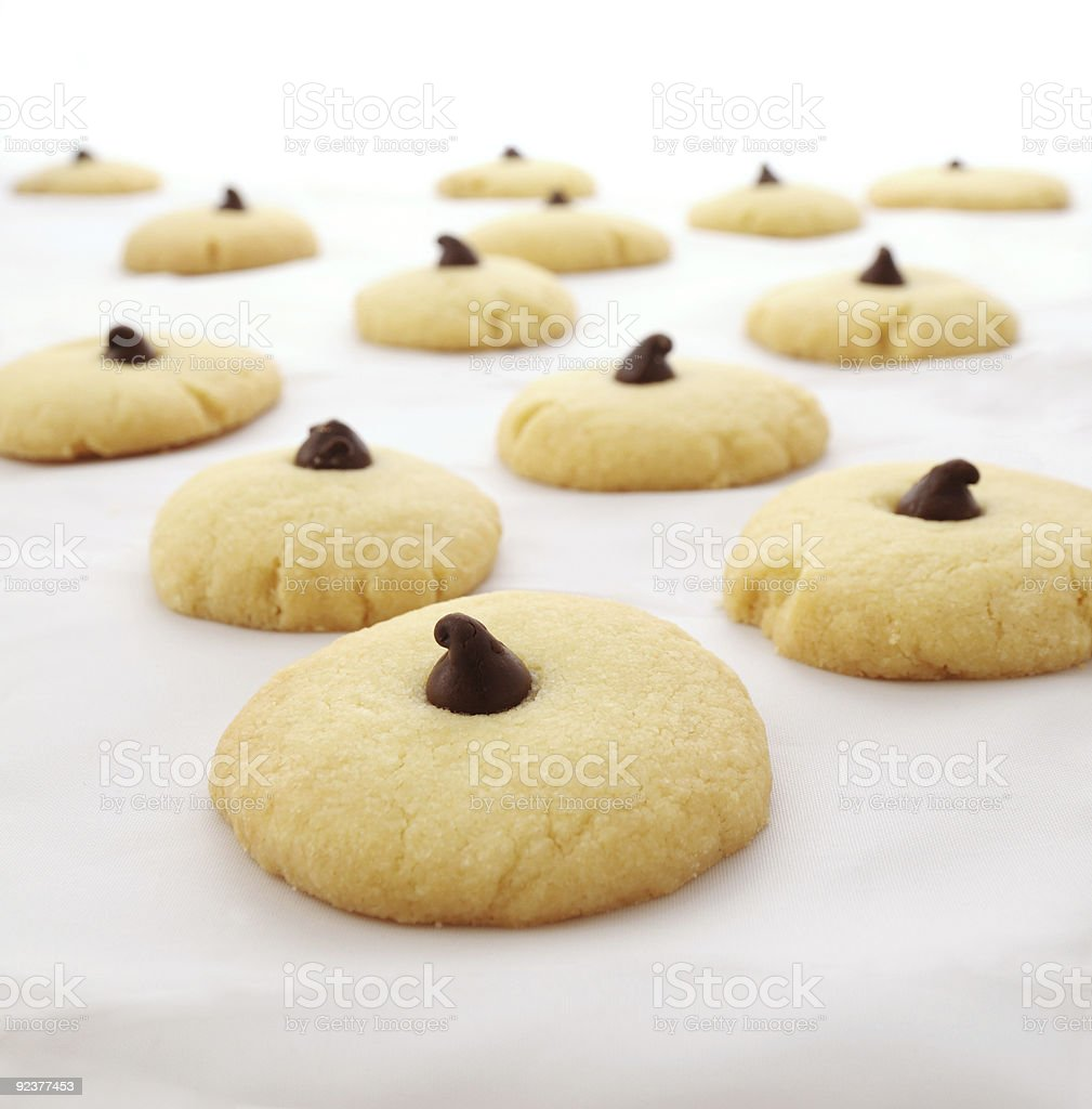 Sweet Biscuits with Chocolate Drops royalty-free stock photo