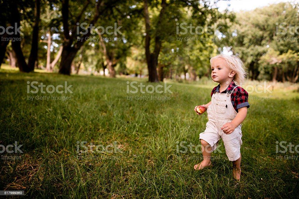 Dolce bambino Biondo Curiosamente esplorare il mondo - foto stock