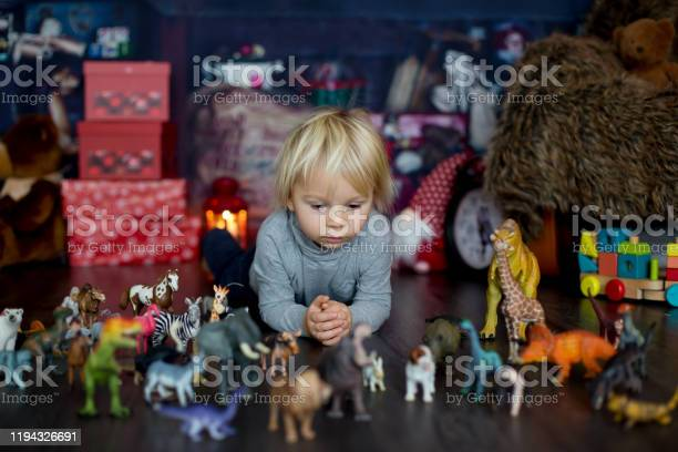Sweet blonde toddler boy playing with plastic animals and dinosaurs picture id1194326691?b=1&k=6&m=1194326691&s=612x612&h=jdfdmbqwtvs9rvfnlau03a 0d2woamvppza i8anqwu=