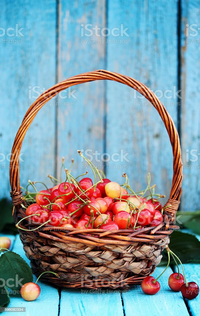 sweet cherries on blue board royalty-free stock photo