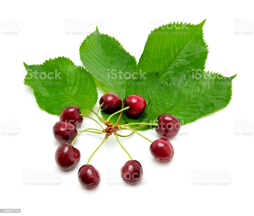 sweet cherries royalty-free stock photo