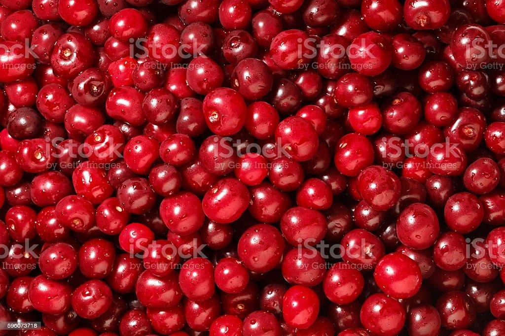 Sweet cherry background royalty-free stock photo