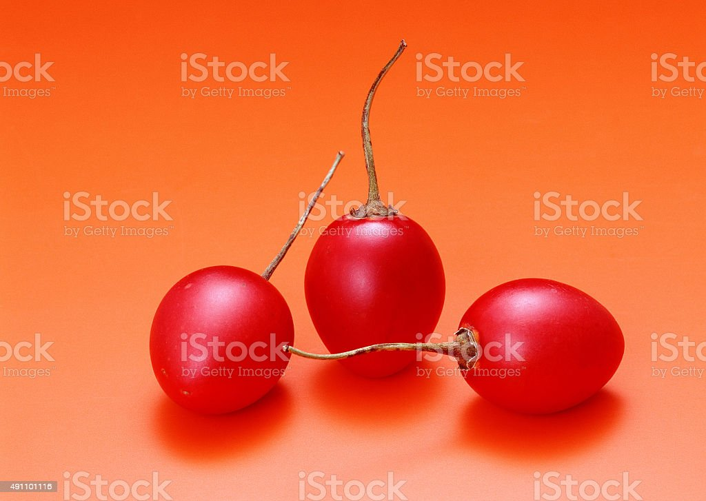 Sweet cherry isolated on red backgorund stock photo