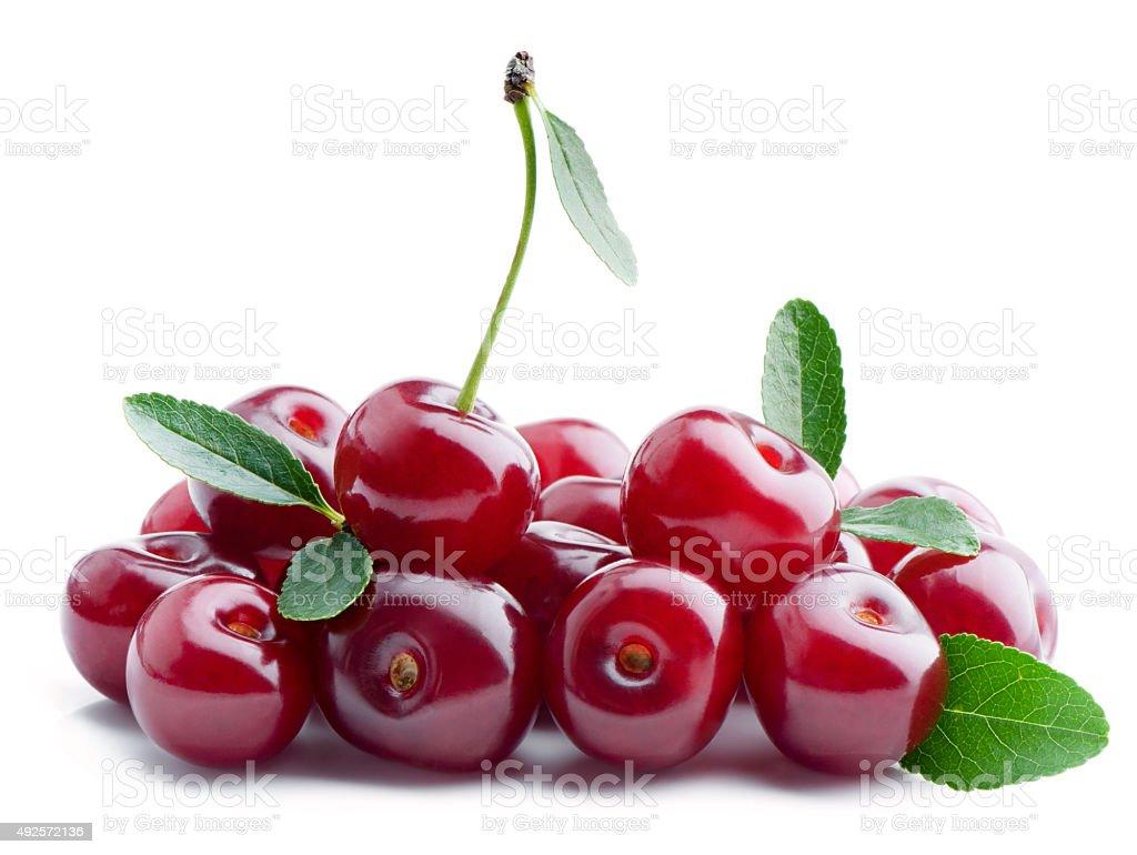 Sweet cherry. stock photo