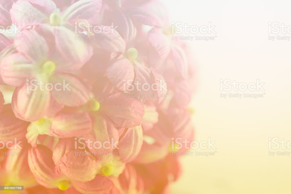 Sweet color flower make of mulberry paper in soft style stock photo sweet color flower make of mulberry paper in soft style royalty free stock photo mightylinksfo