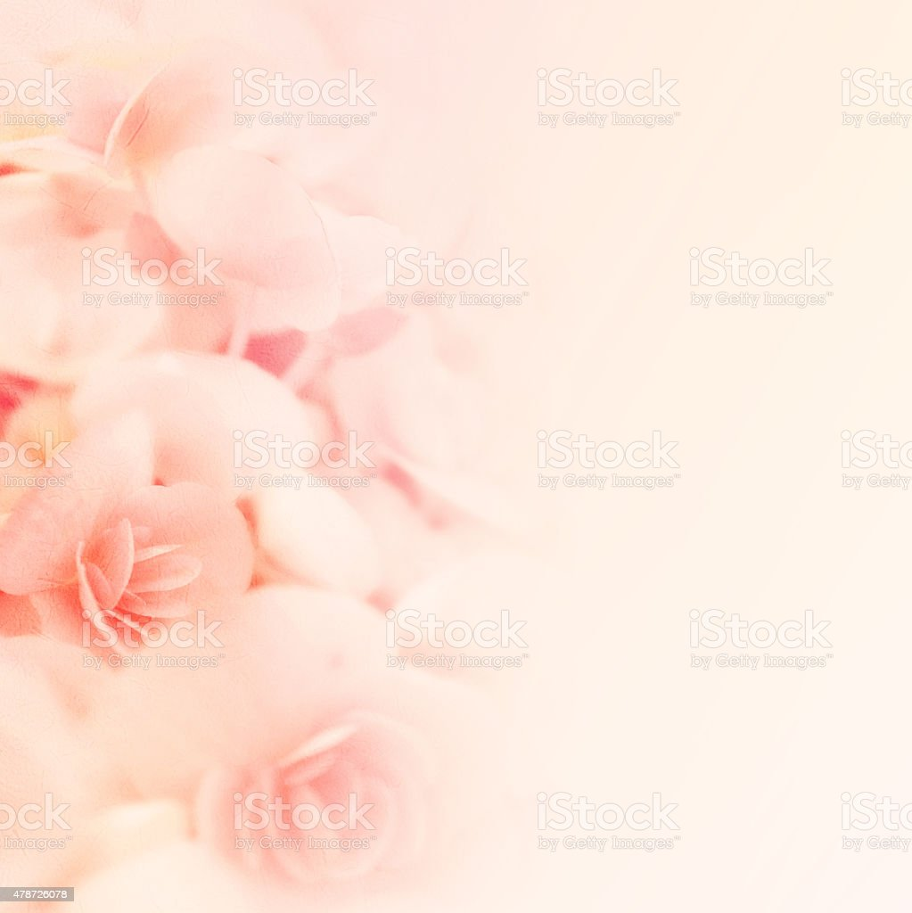 sweet color roses in blur style on mulberry paper texture stock photo