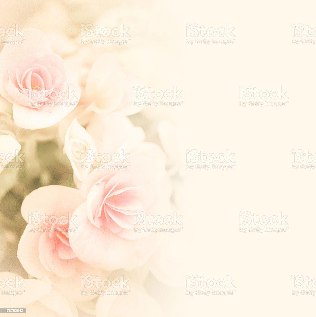 Süße Farben Rosen in blur Stil auf mulberry Papier Textur – Foto