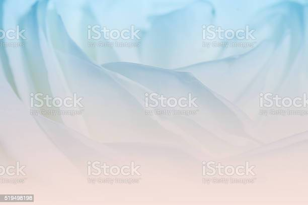 Sweet color roses in soft color for valentine background picture id519498198?b=1&k=6&m=519498198&s=612x612&h=fpm3h2pyadpw0iu2jj67ugp60y njwznk1wezzyjxkm=