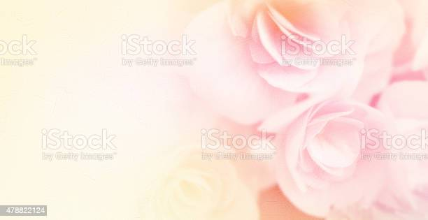 Sweet color roses in soft style on mulberry paper texture picture id478822124?b=1&k=6&m=478822124&s=612x612&h=wdvh1pkyjfwqjjvm6epvmcotzafponwpabjrdcsv r8=