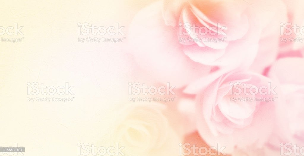 sweet color roses in soft style on mulberry paper texture stock photo