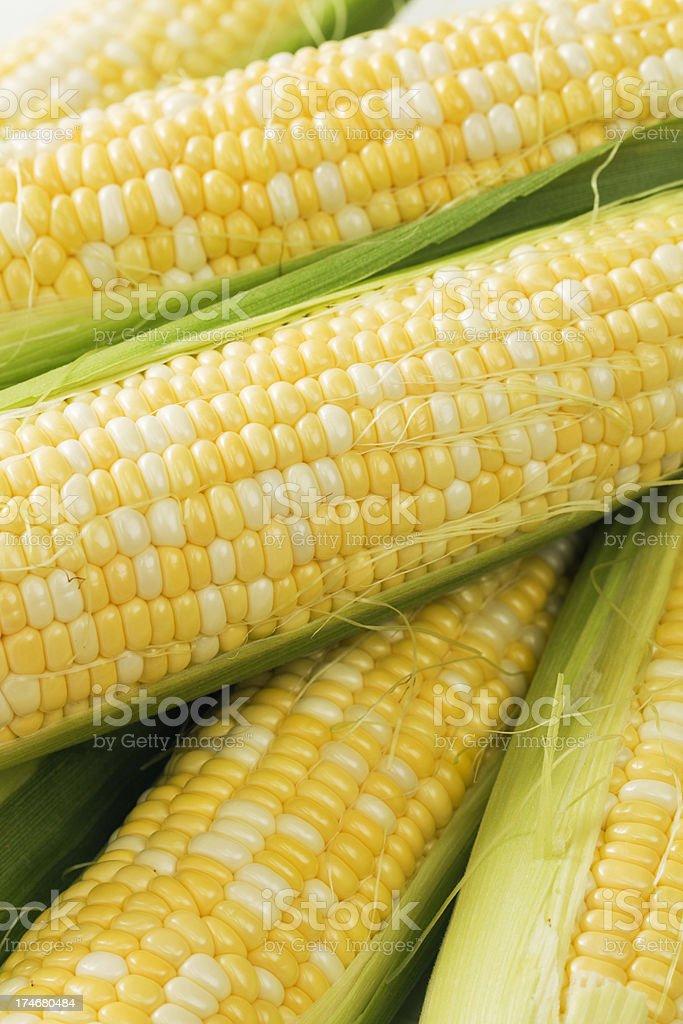 Sweet Corn on the Cob Vt royalty-free stock photo