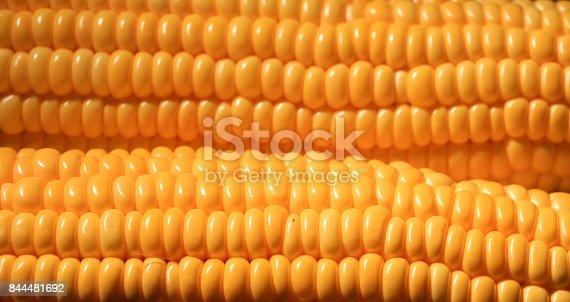 istock sweet corn 844481692