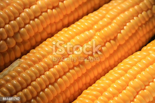 istock sweet corn 844481742