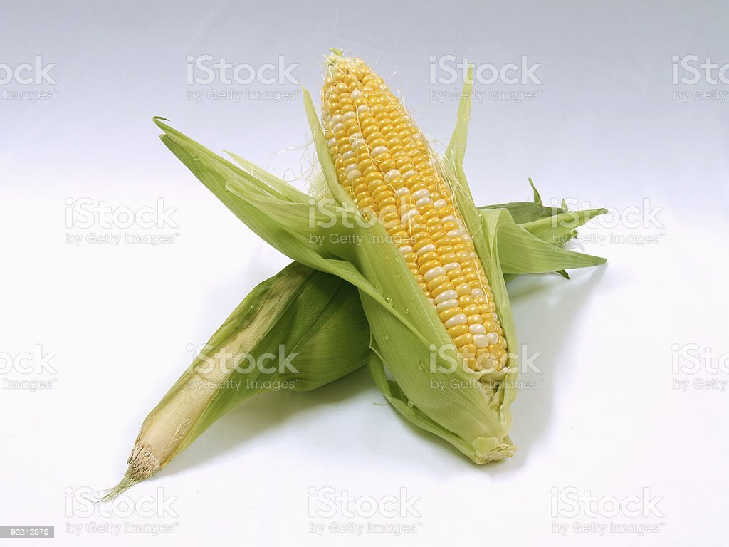 Sweet Corns royalty-free stock photo