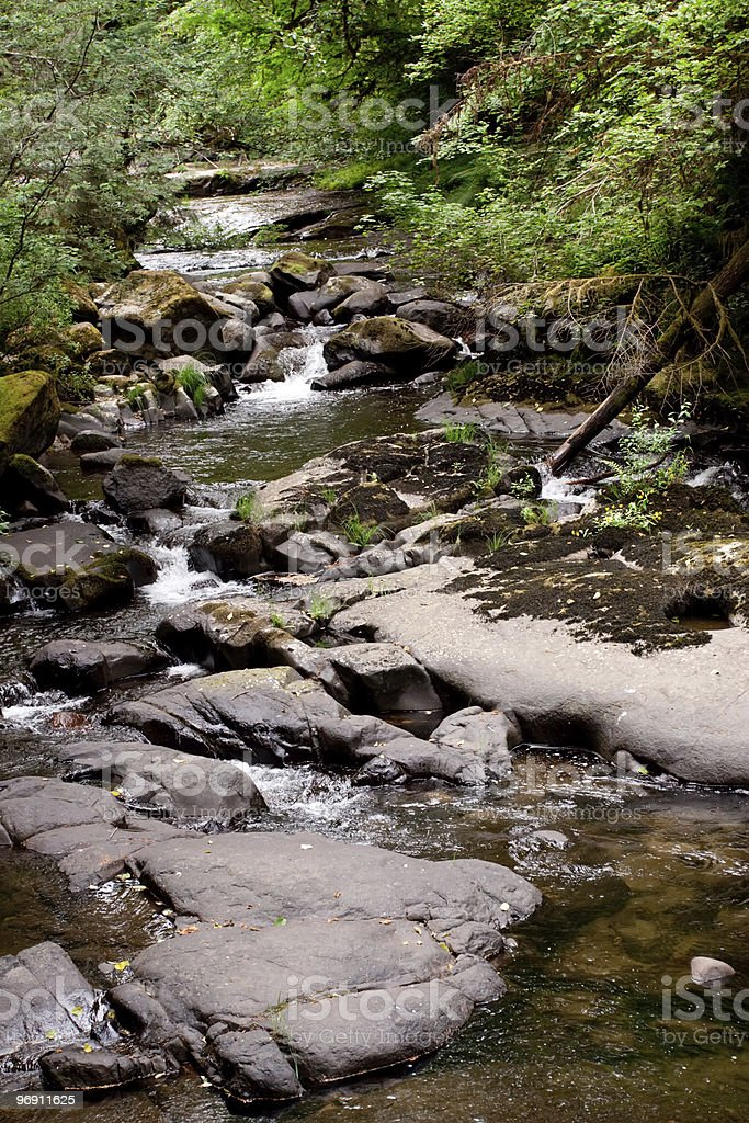 Sweet Creek Falls in Oregon royalty-free stock photo