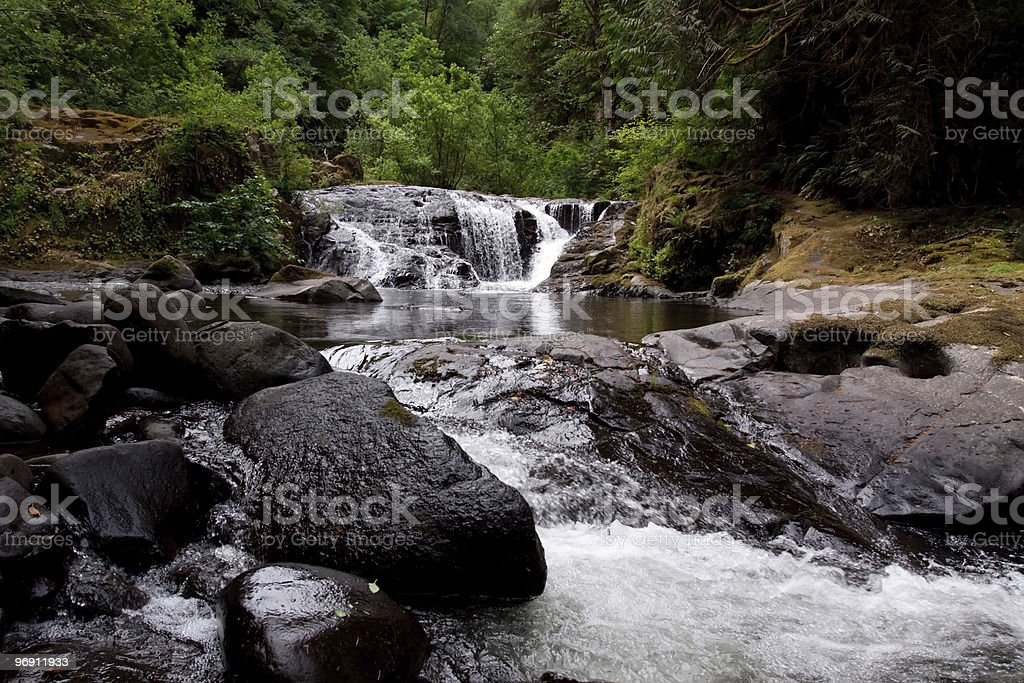 Sweet Creek Falls in Oregon royalty-free stock photo