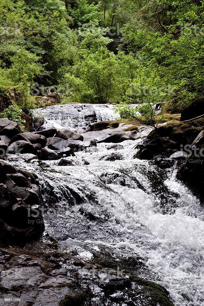 Sweet Creek in Oregon royalty-free stock photo
