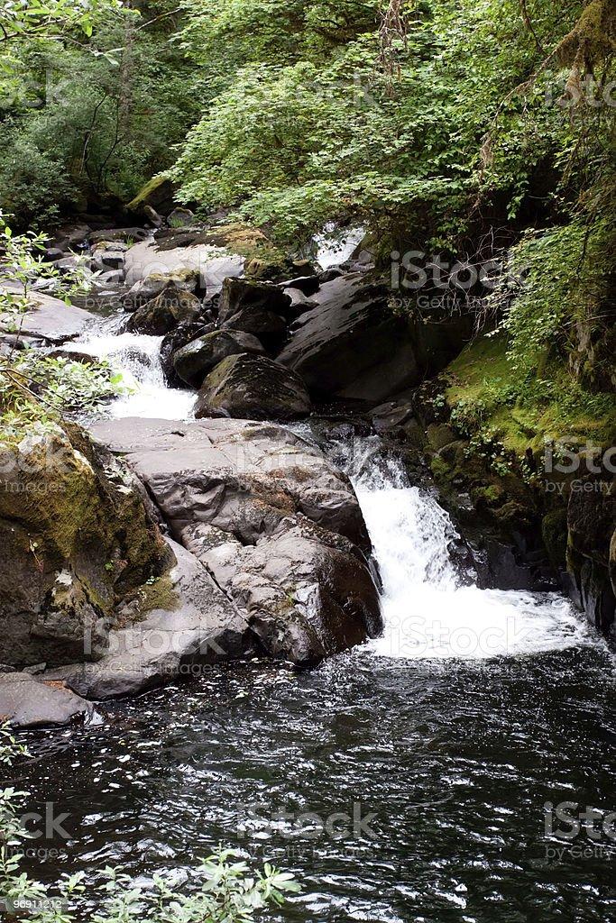 Sweet Creek Waterfalls in Oregon royalty-free stock photo