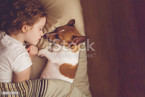 istock Sweet curly girl and jack russell dog is sleeping in night. 868373916