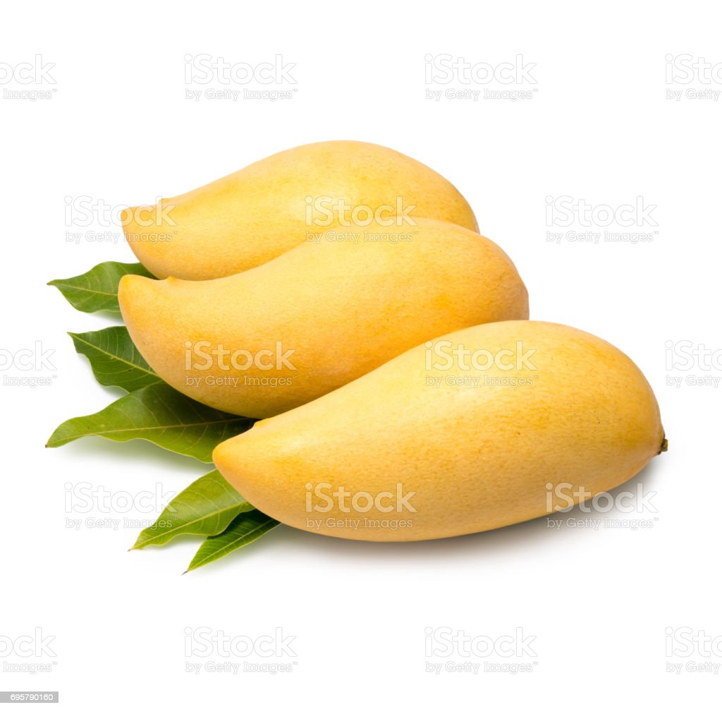 Sweet golden mango isolated on white background.Barracuda mango stock photo