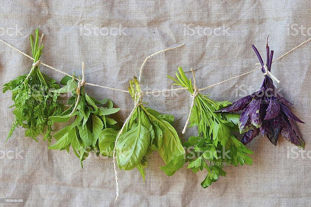 sweet herbs royalty-free stock photo