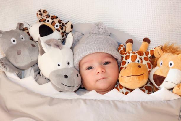 doux petit bébé couché sur le lit, entouré des animaux safari mignon farci - doudou photos et images de collection