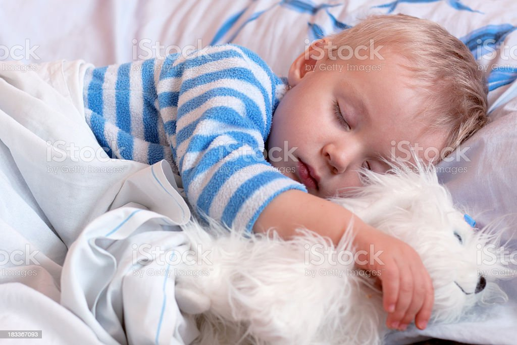 Sweet little boy sleeps with a toy royalty-free stock photo