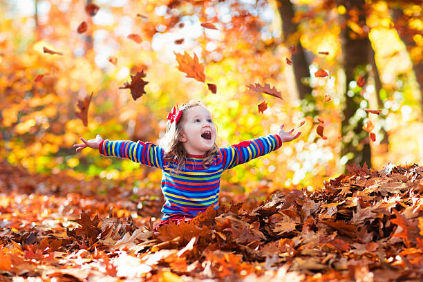 sweet little girl in autumn park - herbst kinder photographie stock-fotos und bilder