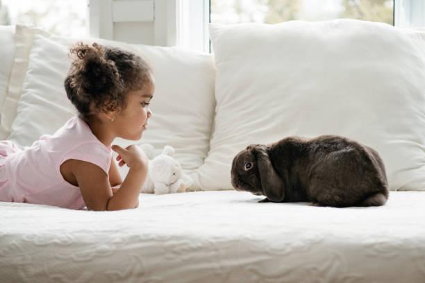 Sweet little girl lying on bed with a cute rabbit ram during easter picture id922146546?b=1&k=6&m=922146546&s=612x612&w=0&h=4cb7dac6 yzdk1hhwqj6itpynyqc77xniqqhkilj76s=