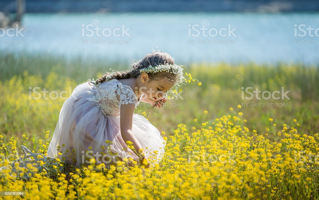 Sweet little girl outdoors picking flowers stock photo