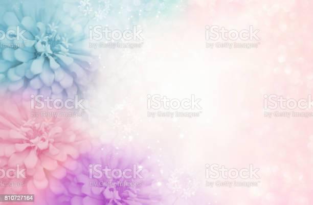 Sweet pastel pink purple blue flower frame on soft bokeh vintage picture id810727164?b=1&k=6&m=810727164&s=612x612&h= lfbgkk4jkdidwiidhc7p8kg0rj1w6u3wpazsmnd0i4=