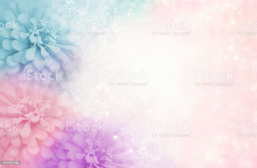 sweet pastel pink purple blue flower frame on soft bokeh vintage background stock photo