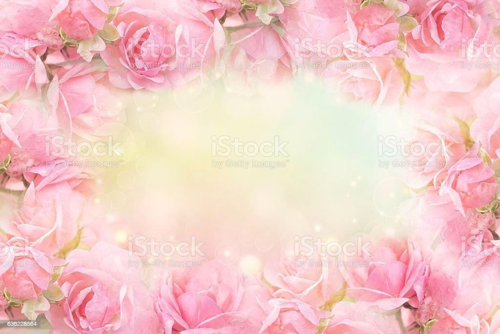 sweet pink rose flower frame on soft bokeh vintage background – Foto