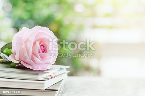 istock Sweet pink rose flower on spiral notebooks against blurred natural green background 1024779638