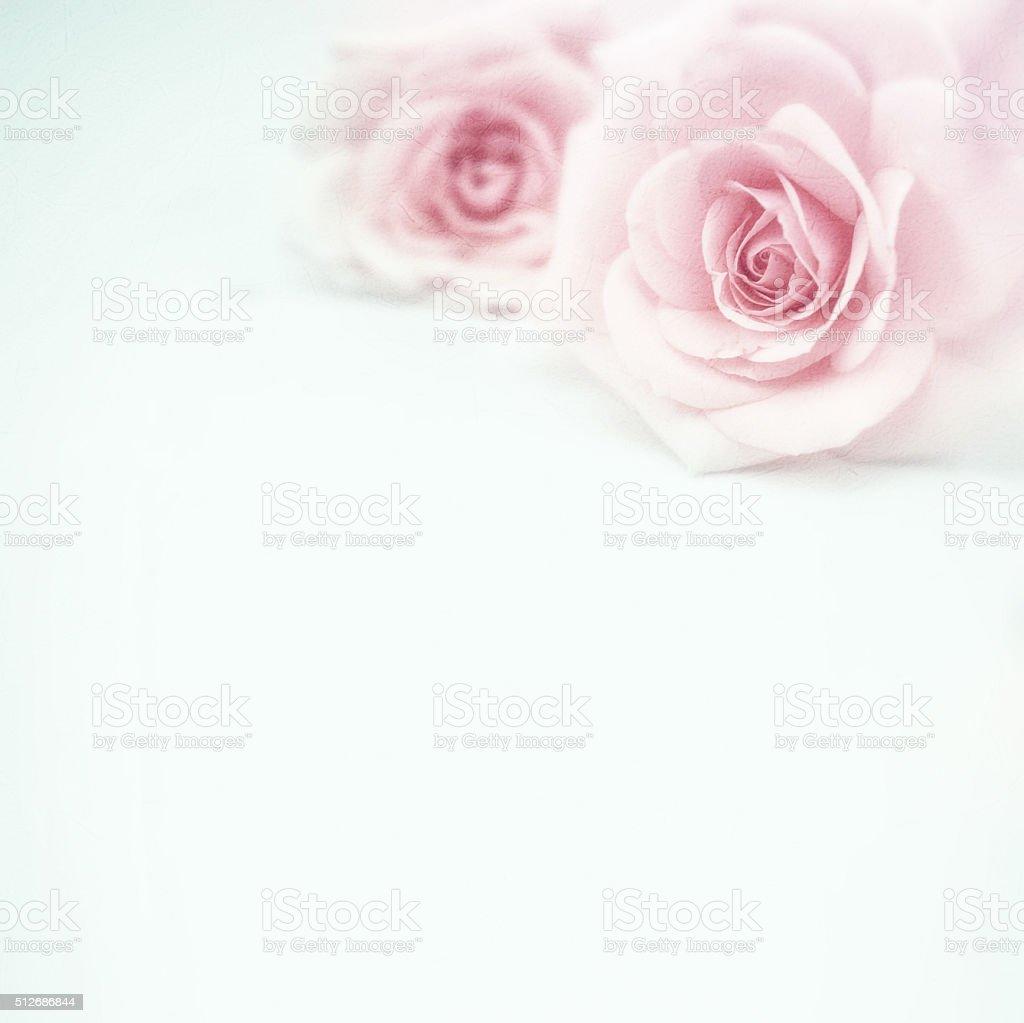 Schöne Rosa Rosen im soft-Look auf Maulbeere Papier Textur – Foto