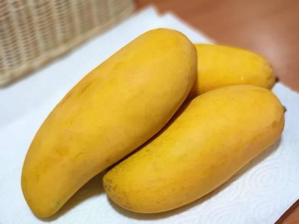 Sweet Ripe mango Thai Fruit – zdjęcie