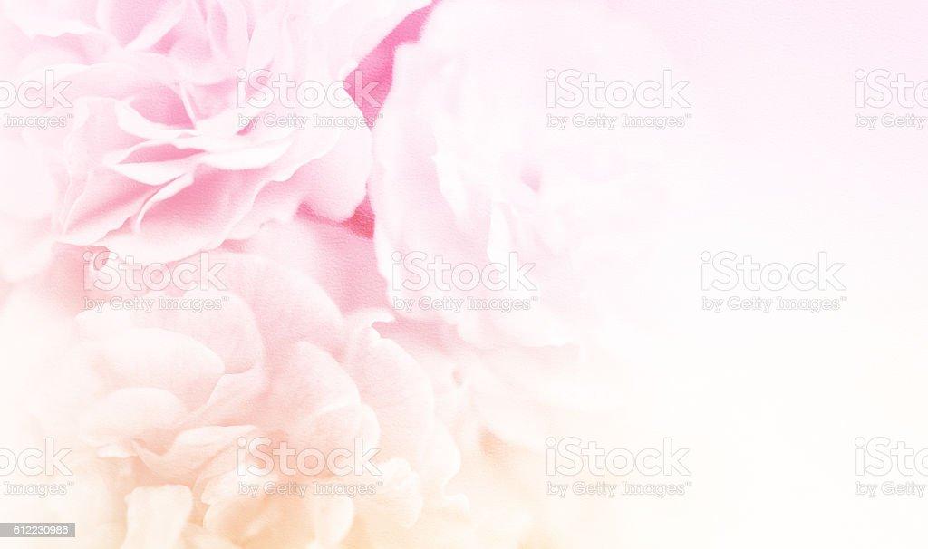 Schöne Rosen in weichen Farben Stil auf Maulbeere Papier Textur – Foto