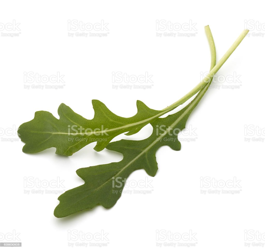 Sweet rucola salad or rocket lettuce leaves  on white ba stock photo