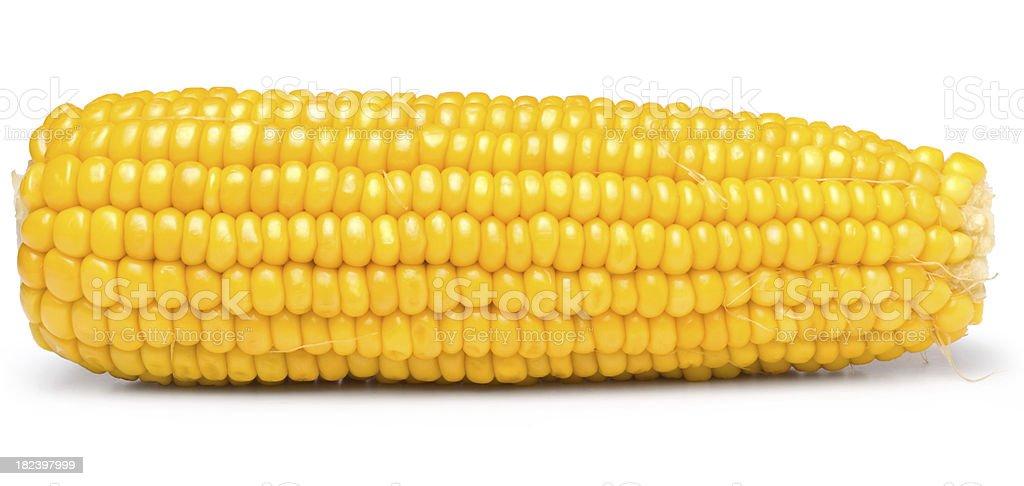 Sweet yellow corn on white background royalty-free stock photo