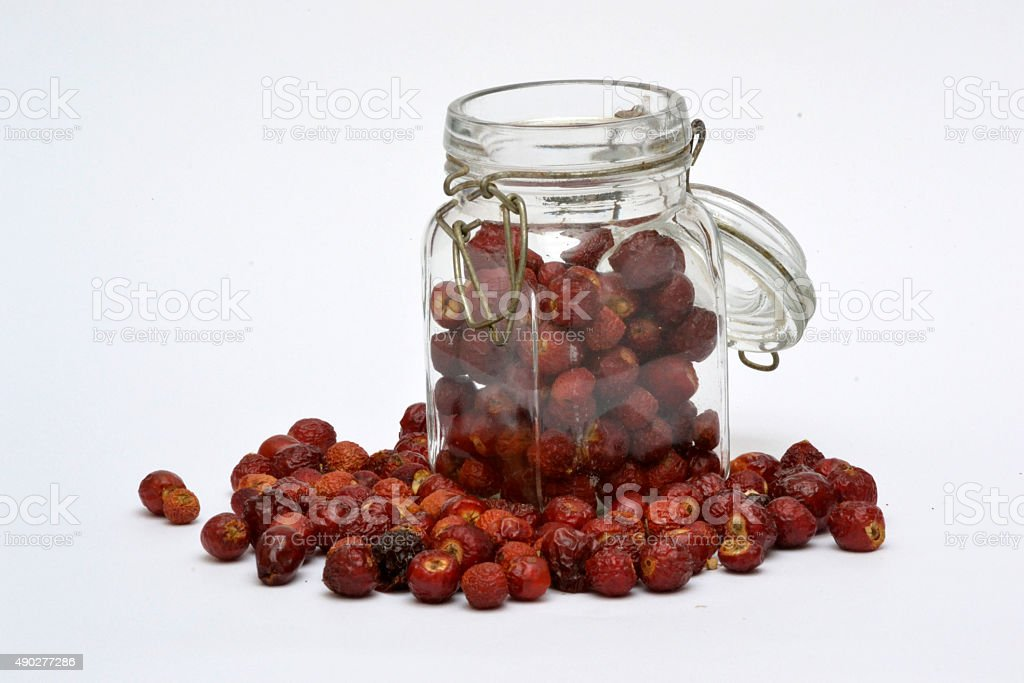 sweetbrier in glass jar stock photo