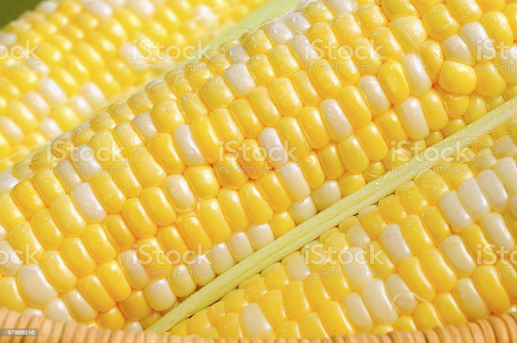 Sweetcorn kernels royalty-free stock photo