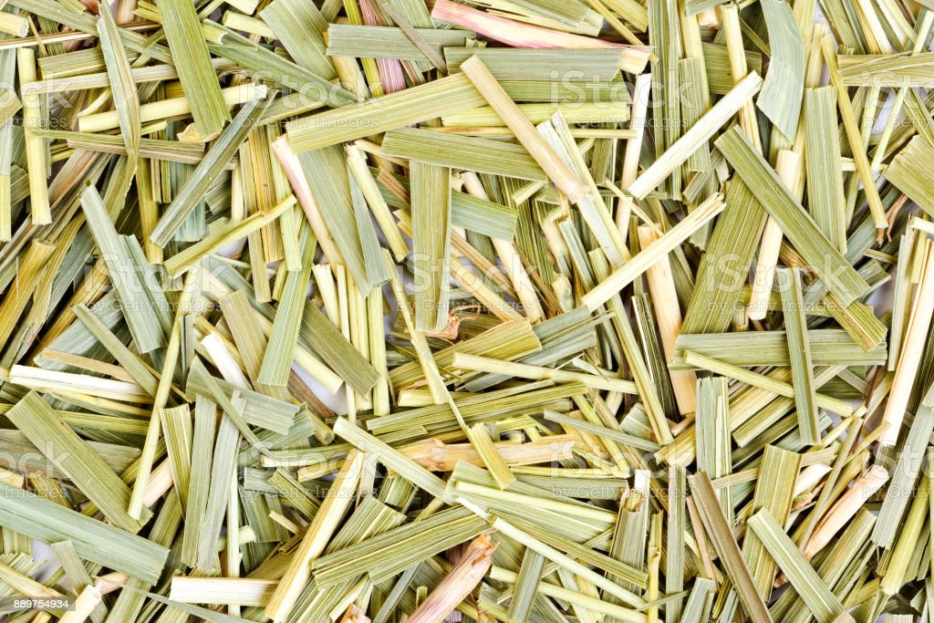 Sweetgrass for medical use. Close-up photo stock photo